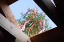 MIt einem kleinen Richtbaum ist das Rathaus geschmückt.