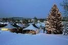 Der illuminierte Weihnachtsbaum in der winterlichen Landschaft des Truppenübungsplatz Hohenfels