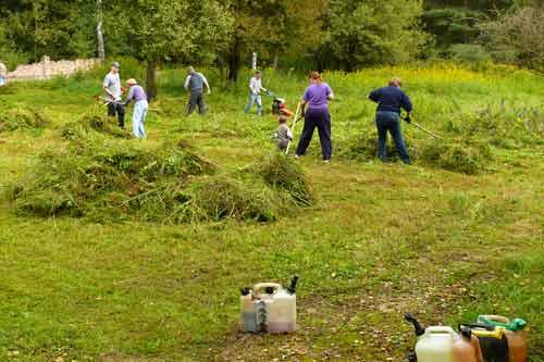 Säuberungsarbeiten auf dem Friedhof (Foto: Norbert Wittl)