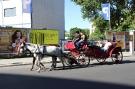 Berlin ist eine Reise wert ..._75